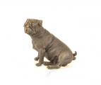 pug bronze BrokInCZ