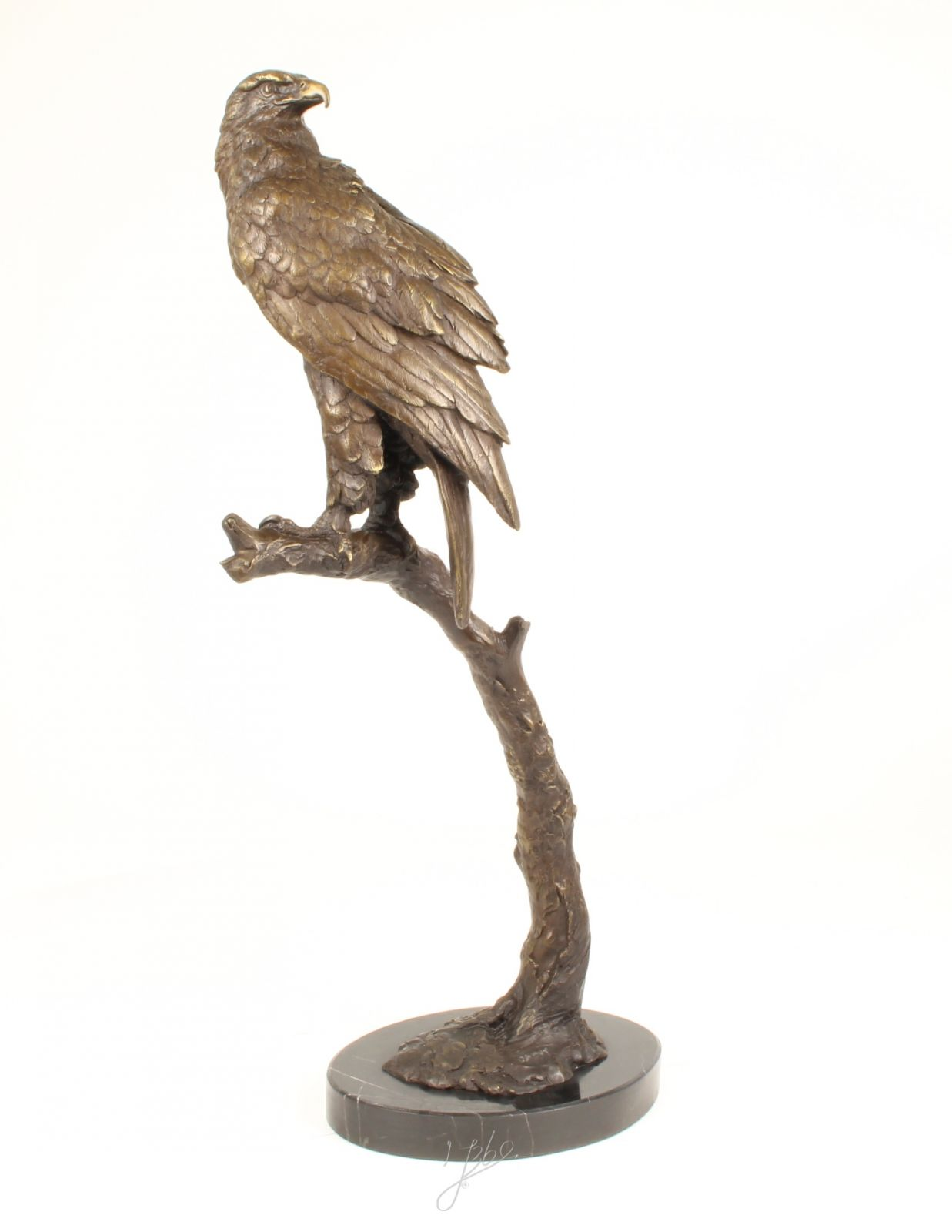 Bronze statue of Sea Eagle BrokInCZ