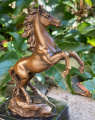 Bronze stallion BrokInCZ
