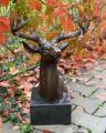Deerhead made of bronze BrokInCZ