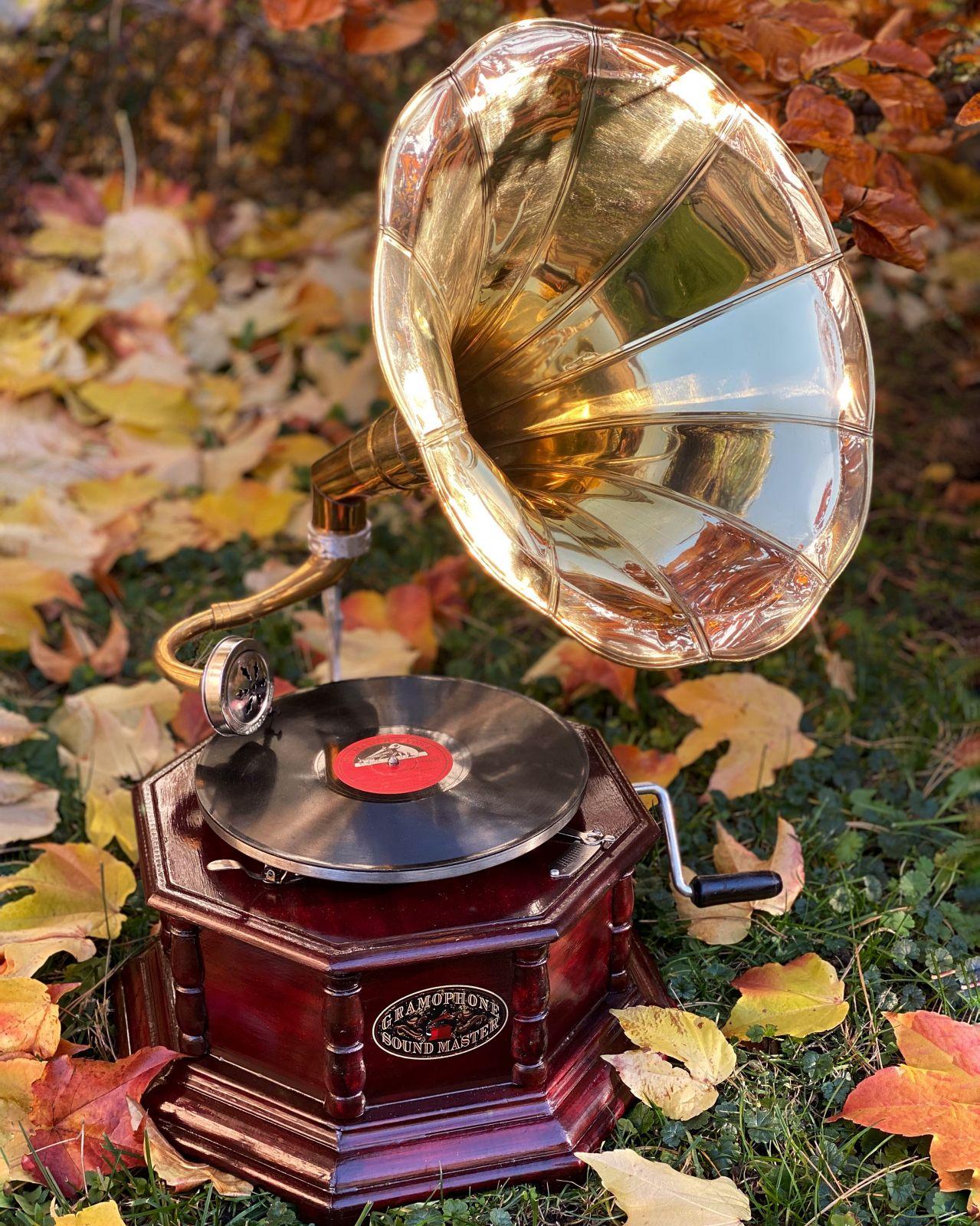Gramophone replica vintage style BrokInCZ