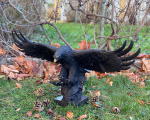 Luxurious large bronze statue of an eagle