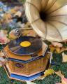 Retro horn gramophone vintage