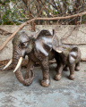 elefant with calf