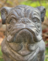 Large statue of English Bulldog made of MGO